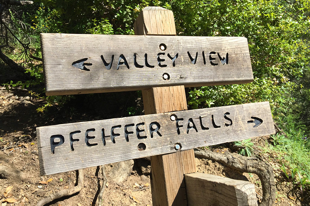 People Can Now Hike the Pfeiffer Falls Trail After 13 Years